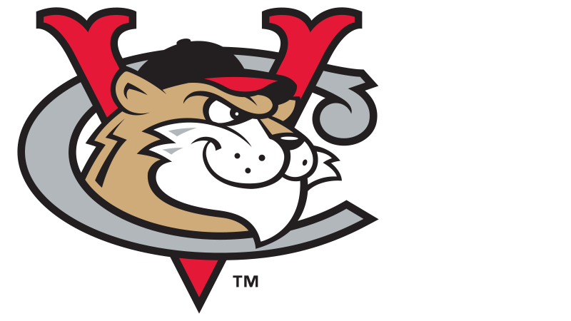 Transfinder's sponsorship helps ValleyCats host first Education Day